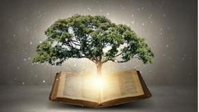 Graceful Perseverance: Gaining Wisdom - 05/30/21