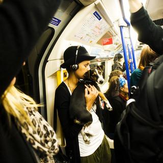 miguel moran - london