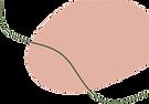 Ilustrações-removebg-preview (2).png