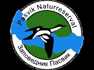 pasvik_1.png