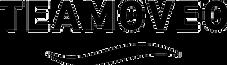 Logo_TEAMOVEO_nb.png