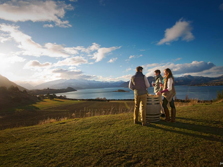Intercâmbio na Nova Zelândia!🇳🇿✈️🧳