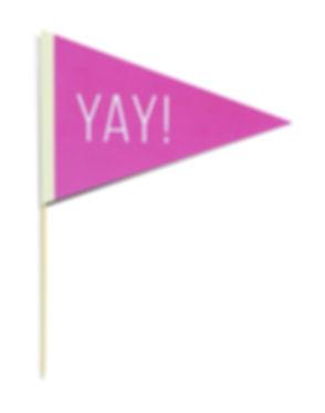YAY Flag