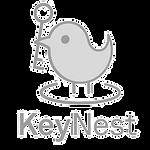 vrtech-competition-keynest-logo_edited_edited_edited.png
