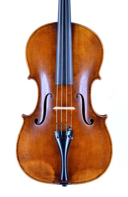 Mantegatia Viola