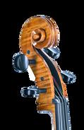 Cello 2021