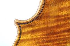 Violine Eckendetail