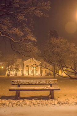 _Troszku śniegu napadało.__Park Garbolewskich w Sochaczewie_fot