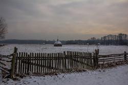 _Co w puszczy zimą  piszczy__2016_fot