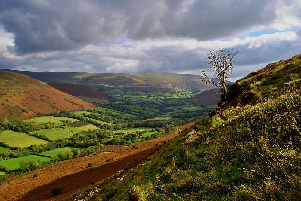 A valley with small streams converging in the Brecon Beacons
