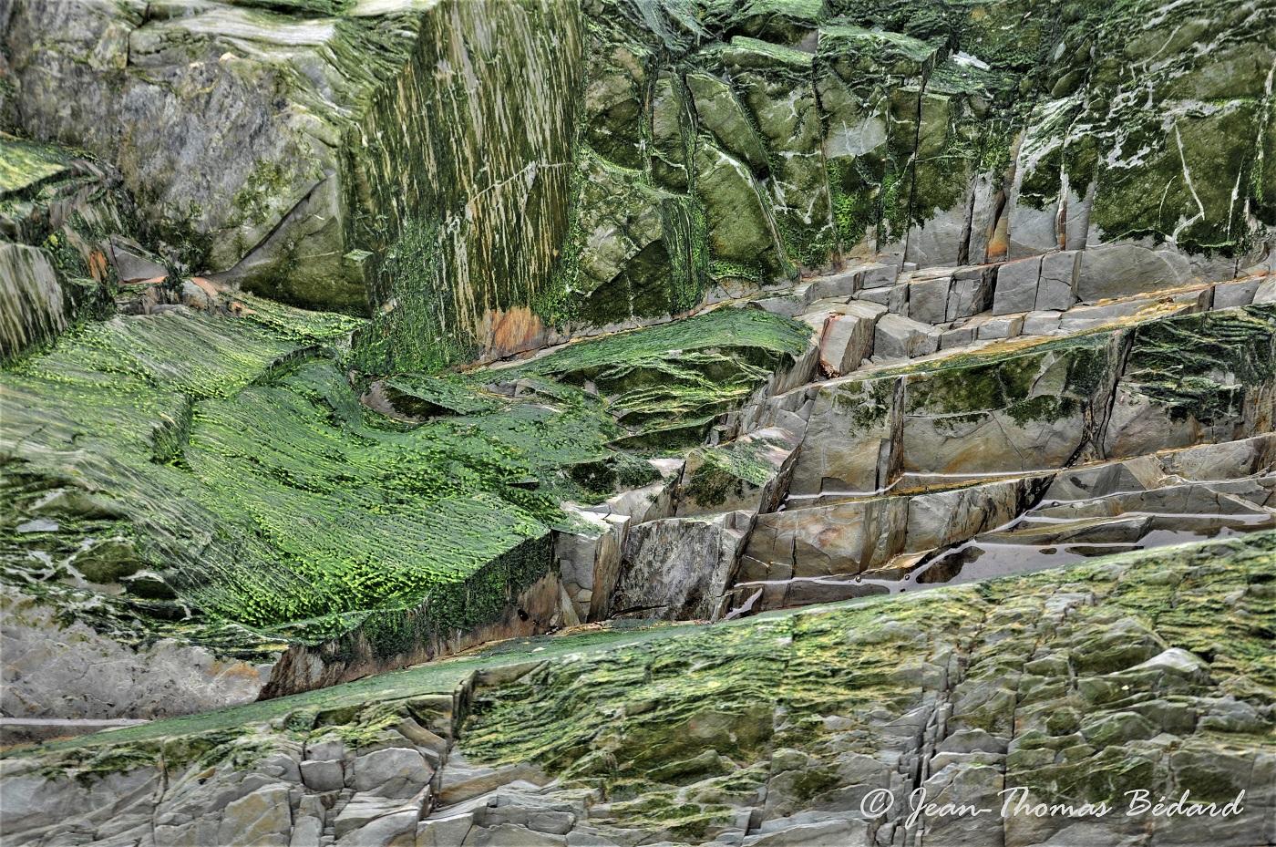 De pierre et d'émeraude -Le Bic 2017