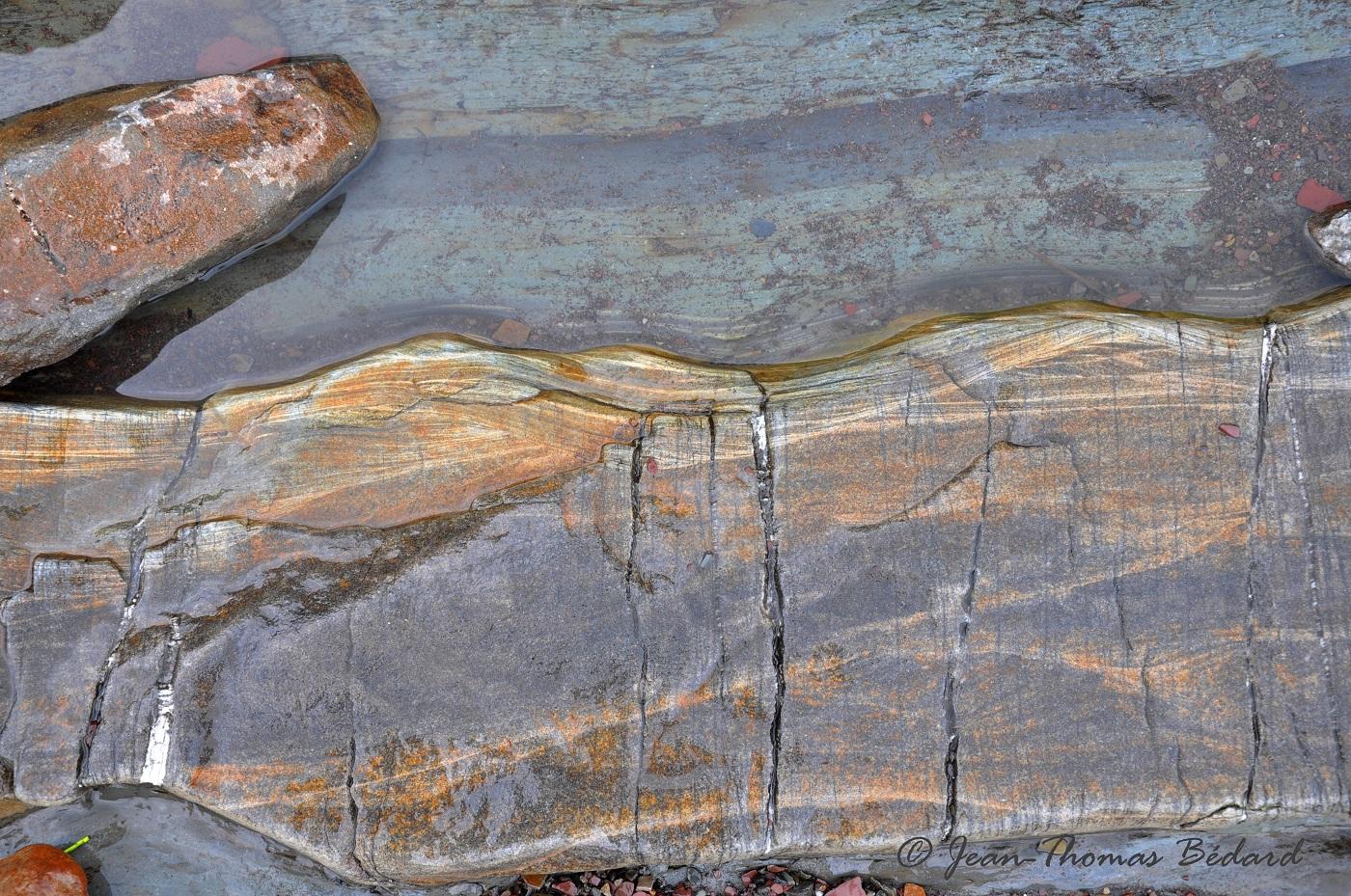 Le lit du fleuve -  L'Islet-sur-Mer 2013