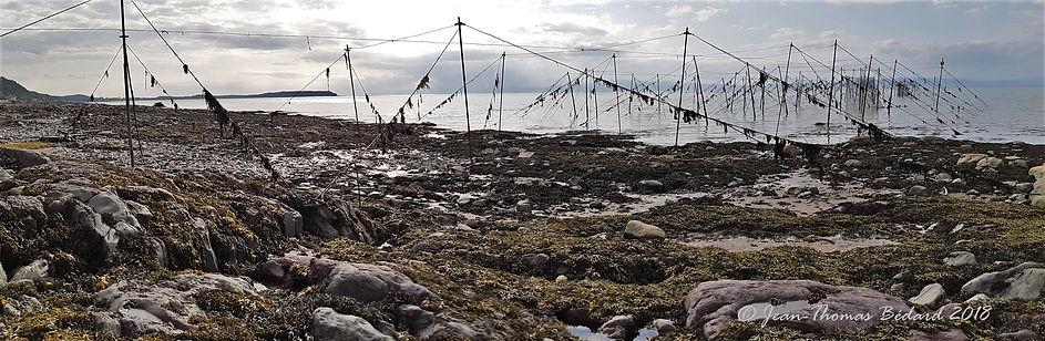 pêche à la fascine, plage de Rivière-Ouelle, 2018