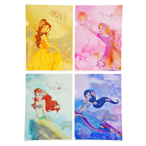 Disney File Series  : 4 pc set Disney Princess and Dream