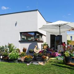 130815_Grell_Seestadt_Kleingarten_06.JPG