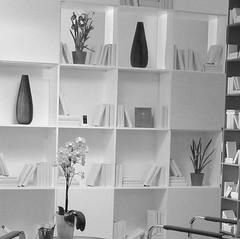 Architekt_Peter_Grell_iQ-apartment_Bild_