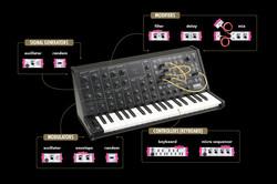 SynthCarousel_Synth.jpg
