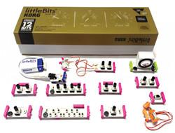 little-bits-1024x781.jpg