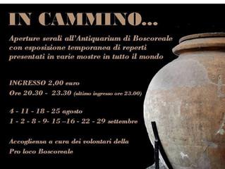 """""""ESTATE AL MUSEO""""  presso l'Antiquarium di Boscoreale"""