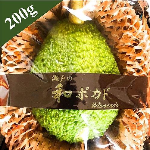 愛媛県産アボカド 「和ボカド」【200g】