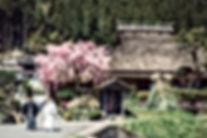 190420_Kyoto_0021.jpg