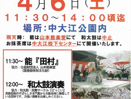 4月6日(土) 桜まつりお茶会