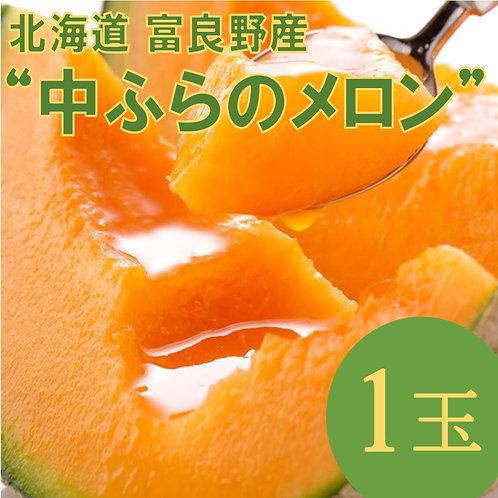 北海道 富良野産「中ふらのメロン」1玉