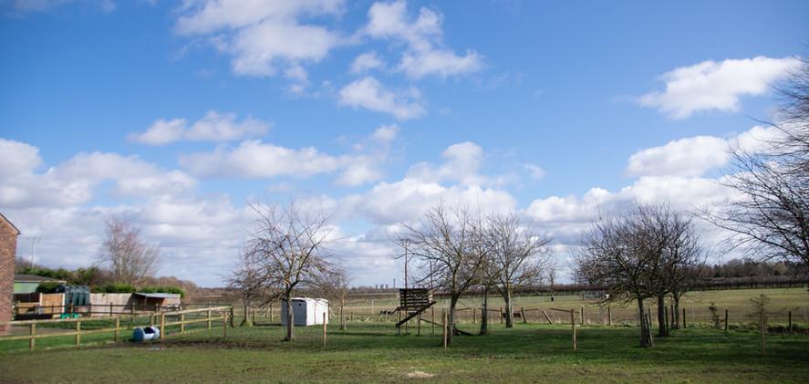 Land at Yew Tree Farm