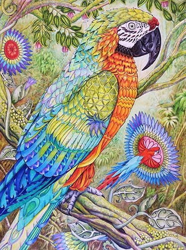 color-me-your-way-coloring-book-coloring-page-parrot2