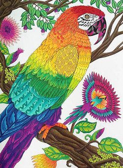 color-me-your-way-coloring-book-coloring-page-parrot