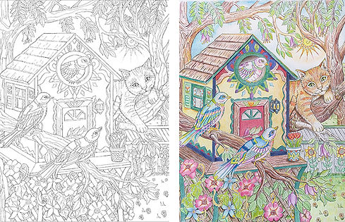 Preview---Color---Side-by-Side.jpg