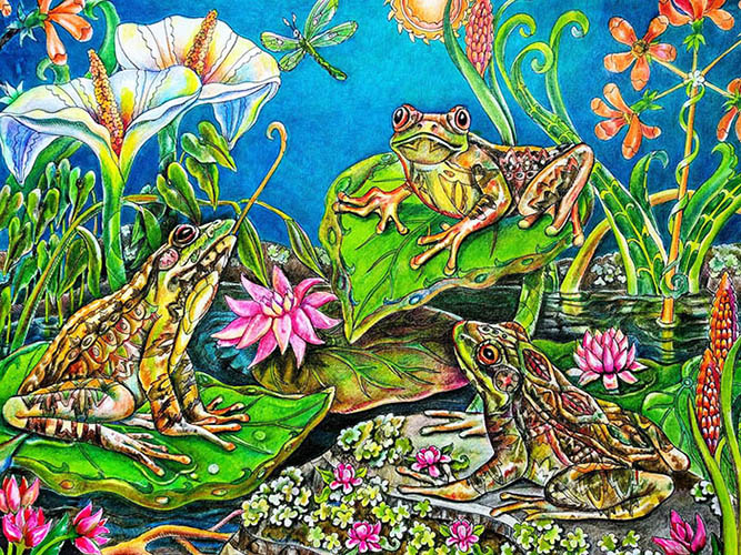 color-me-your-way-coloring-book-coloring-page-frogs