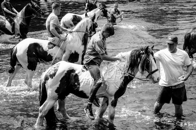 Appleby Horse Fair 14
