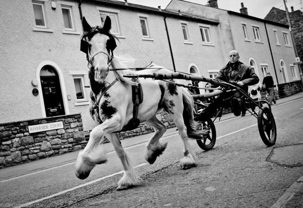 Appleby Horse Fair 17