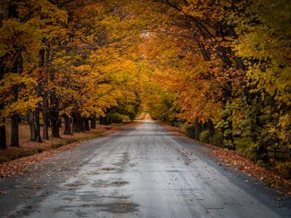 Quebec fall road