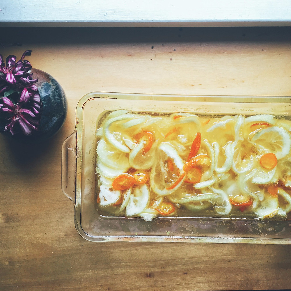 Lemons and Kumquats for Shaker Lemon Pie