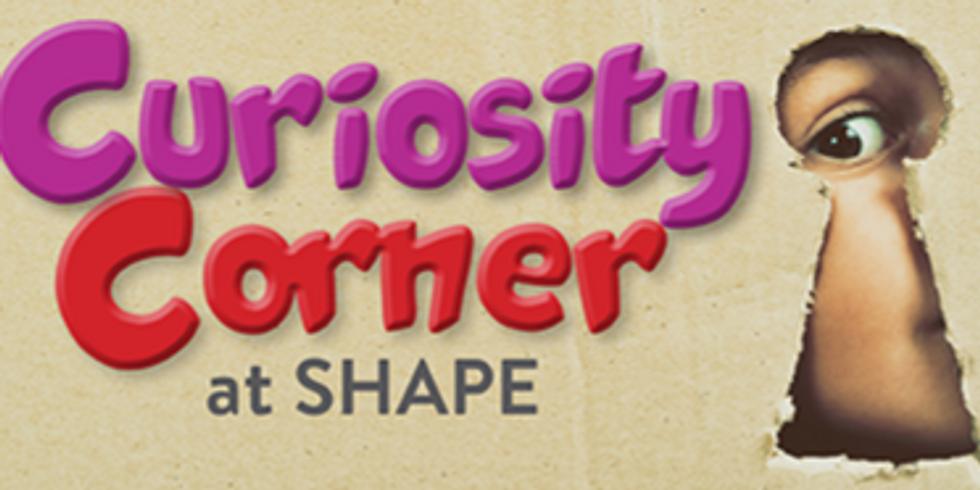 Curiosity Corner: Every 1st Saturday!