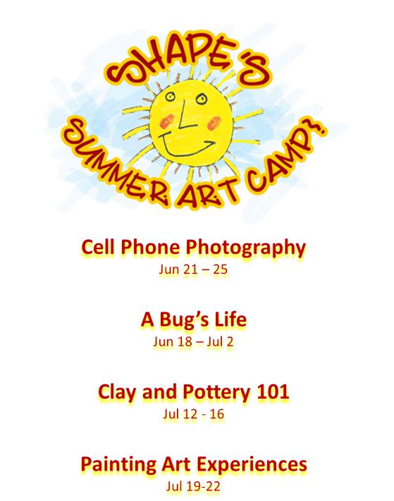 SHAPE 2021 Sumer camp.png