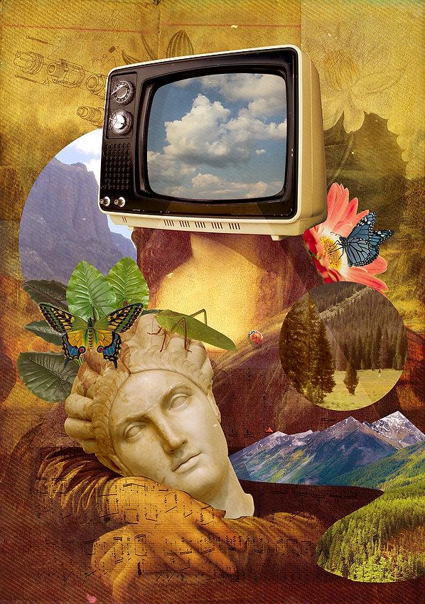 dreamseeder-600px_edited.jpg