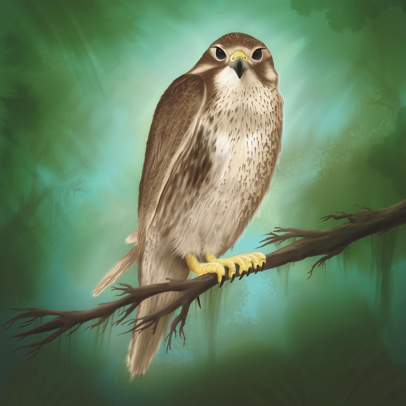 bird-digital-painting-by-eduardo-galvani.png