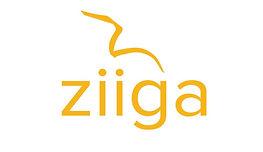 ziiga logo 2020 web.JPG