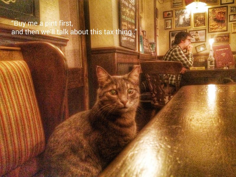Cat in a pub moment
