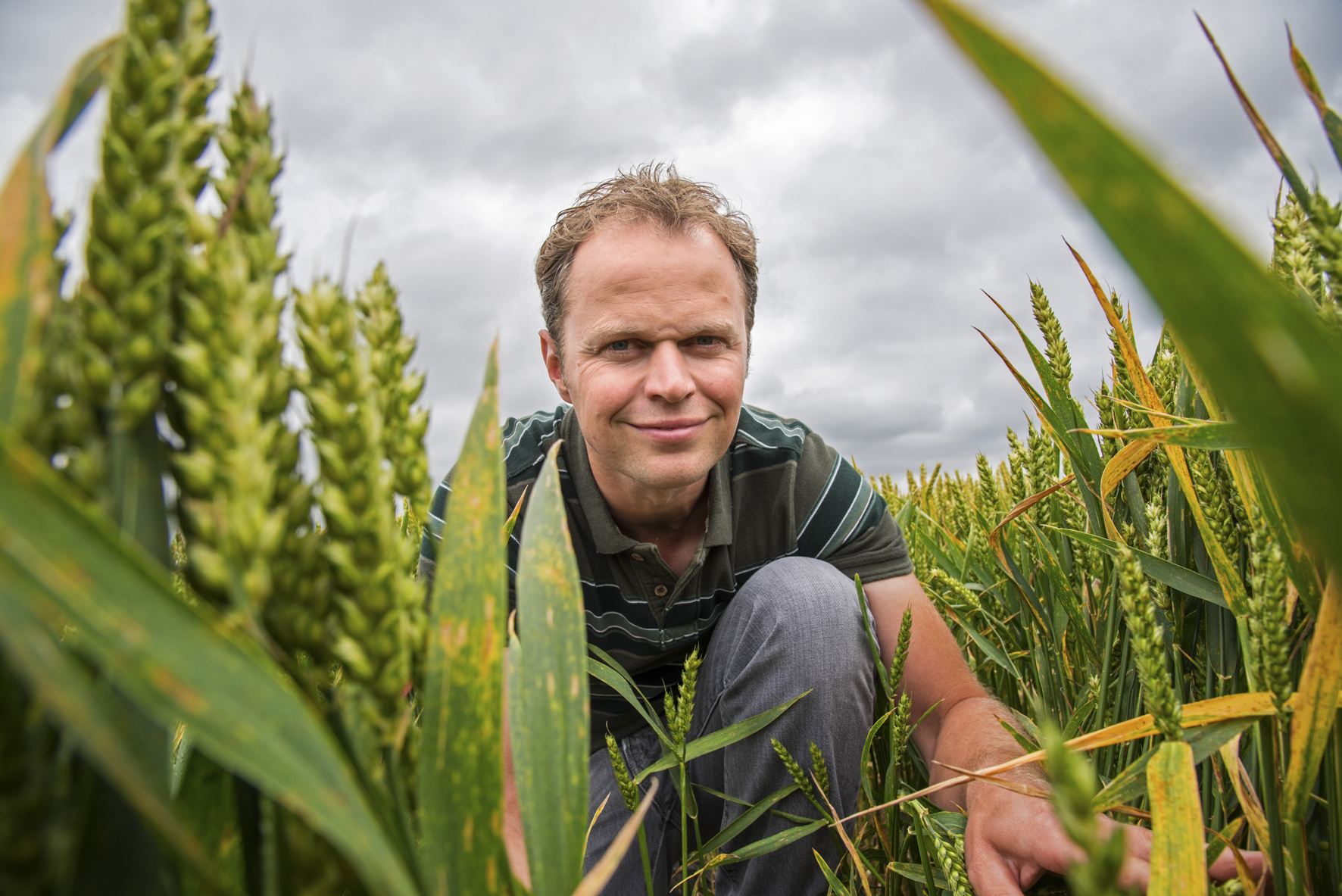 Farmer Andrew Howard - Farmers Weekly feature