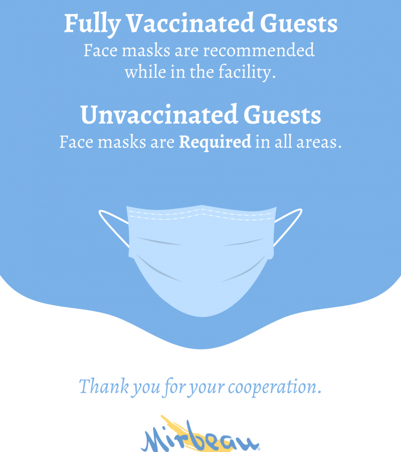 covid mask information poster
