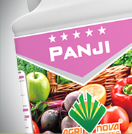 box_Panji02.png