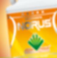 box_Norus02.png