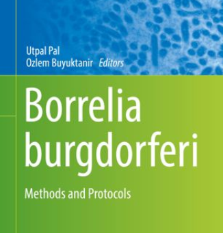 Methods in Microbiology: Artificial Infection of Ticks with Borrelia