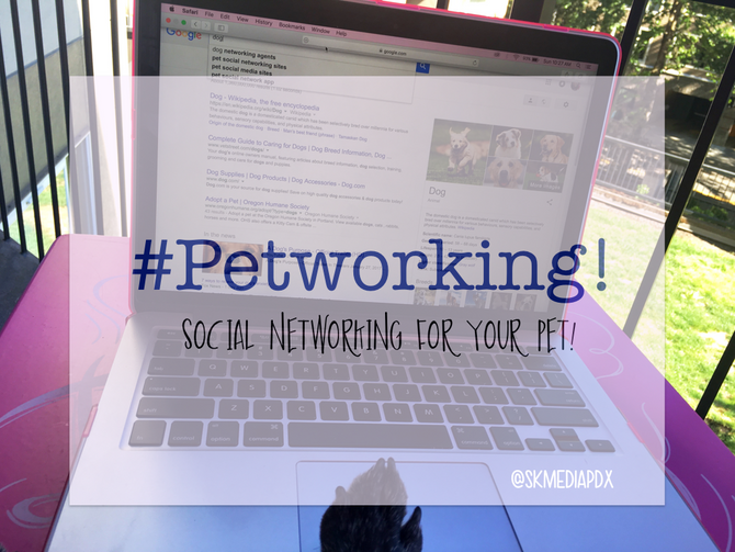 Petworking! Social Networking For Your Pet!