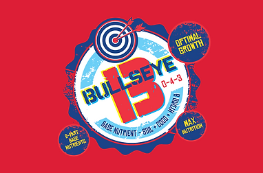 bullseye b thumbnail.png