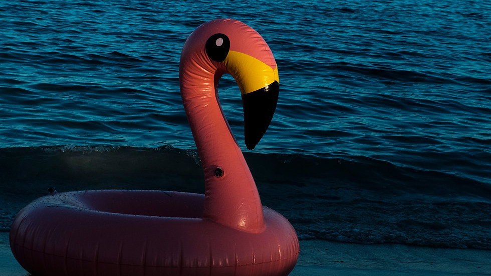 Beached Flamingo | Wallpaper